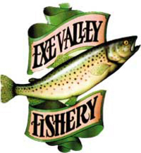 Famed for the fly fishing it can offer.  Sport may include casting for Rainbow Trout at our beautiful small Stillwater location, or for those who like catching wild fish there are also abundant rivers containing Wild Brown Trout, Salmon and Grayling.