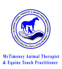 McTimoney is a technique designed to re-align the spinal column. It is named after John McTimoney who developed the technique. He trained as a human chiropractor in 1950 and then went on to develop the theory on animals. In the 1970's he started to teach his work to enable survival of the technique. Contact: Rebecca Thom (nee Rebecca Dale)