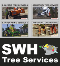 SWH Tree Services has developed a reputation throughout Cumbria and the North West for providing professional tree care of the highest standard... We provide services to both domestic and commercial clients ranging from individual tree surgery in private gardens to large and small-scale tree removal and vegetation clearance. All our operators are professional arborists (tree surgeons) and have worked in all aspects of their profession for many years. Their qualifications range from the Royal Forestry Society Certificate in Arboriculture to City and Guilds in Arboriculture and all staff are NPTC Qualified to a very high standard. We are committed to providing the best possible care for trees in a professional, competent and sensitive manner. All our operators are professional arborists (tree surgeons) and have extensive experience and are fully qualified. We offer free, impartial advice on the best possible solution to your needs and those of your trees. We are qualified to diagnose diseases and identify weaknesses in trees and advise you on the best course of action to take. Wherever possible we try to save trees, protect them and keep them in good health.